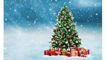 19.12.17 Поздравления с Новым годом и Рождеством